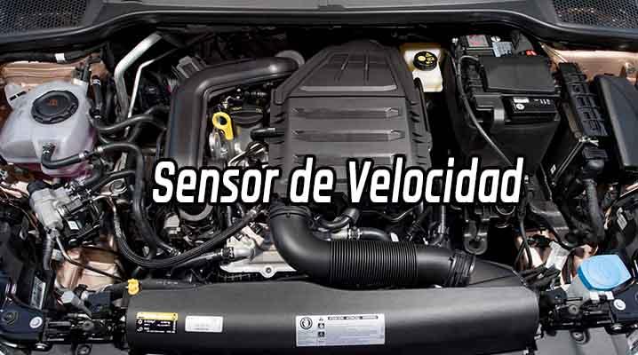 Sensor de Velocidad - Sensor VSS