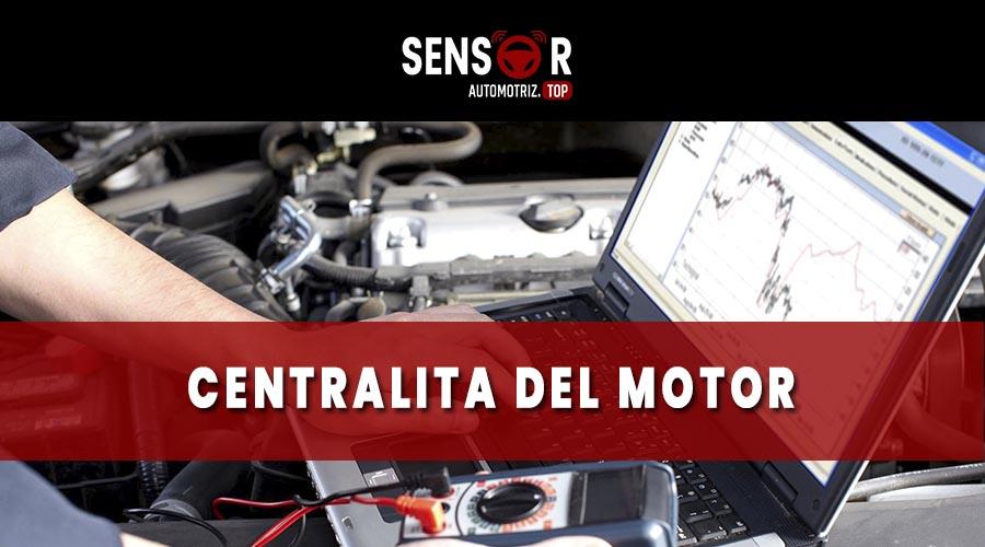 centralita del motor o ecu
